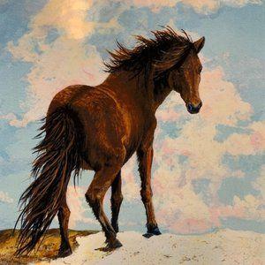 Assateague pony print by Nancy Hogan Armour